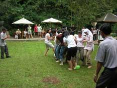 guest_activities_1.jpg